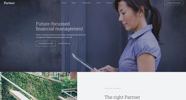 websites-for-cloud-accountants5